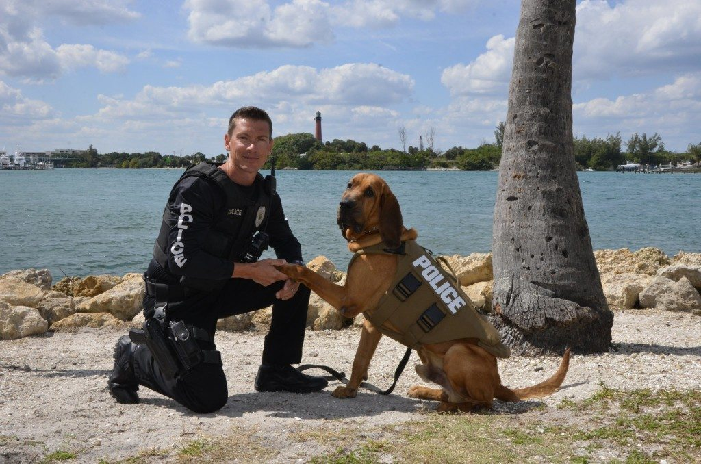 basset-hound-and-his-police-officer