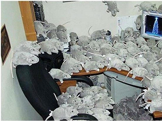 office-pranks2