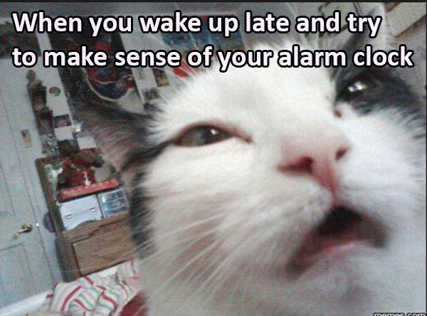 21-memes-that-sum-up-the-terror-of-waking-up-late
