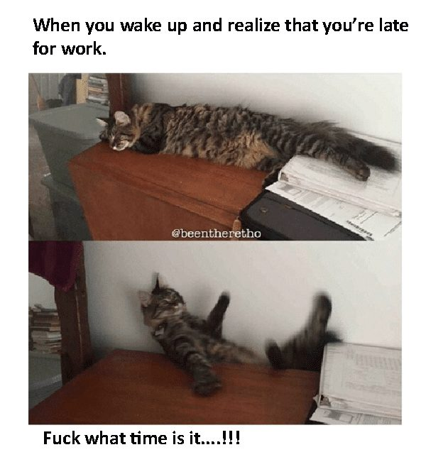 8-memes-that-sum-up-the-terror-of-waking-up-late