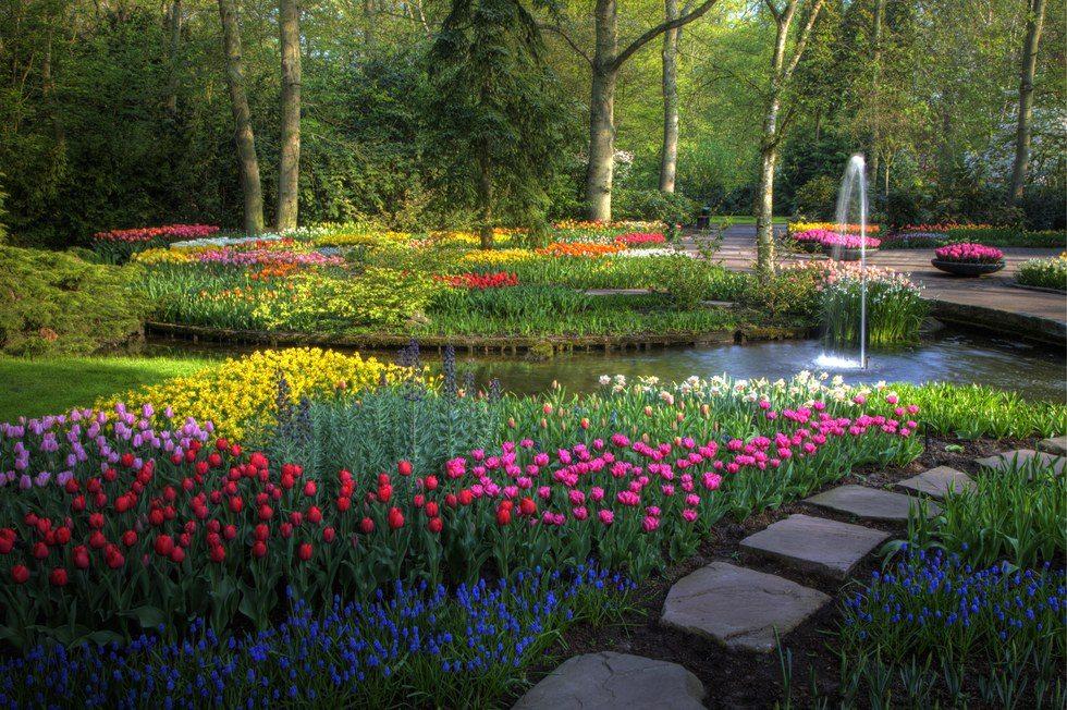 beautiful-garden-1