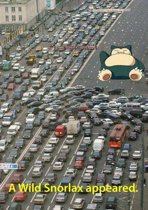 funny-traffic-pics-9