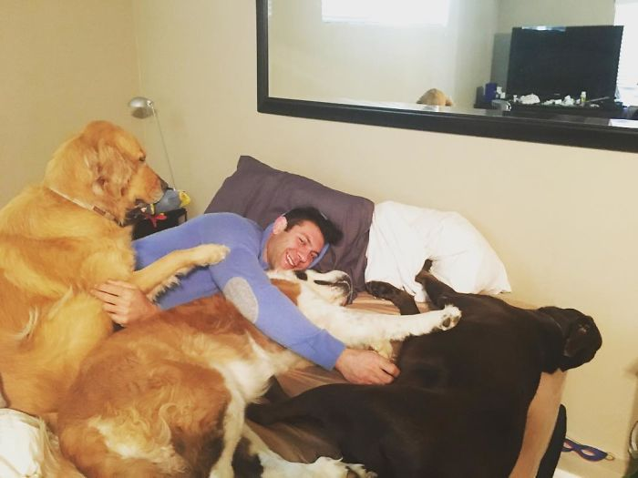 guy-keeps-rescuing-pets-10