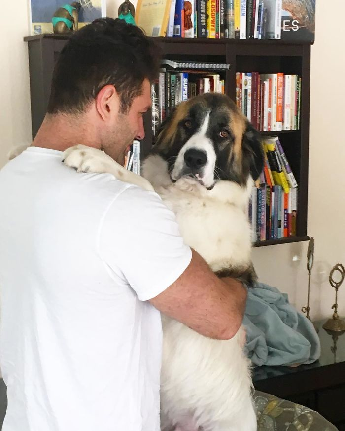 guy-keeps-rescuing-pets-7