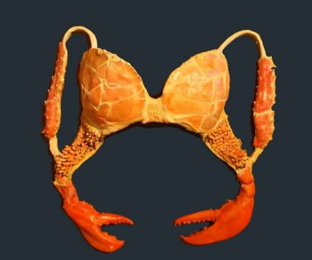 funny-bras-4