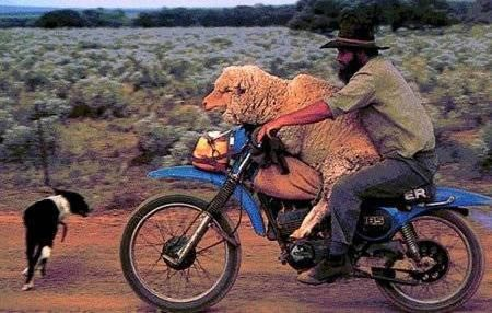 funny-people-on-motorcycles-1