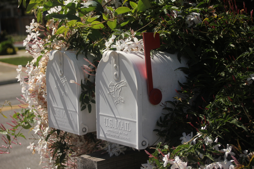 Flowers around mailboxes.